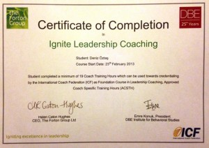 Ignite Leadership Coaching